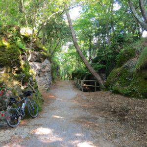 V7b Parc de Portofino, au milieu du parc (© Thierry Labour)