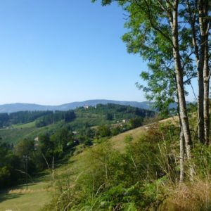 V4 paysage du Beaujolais ©Ph Chazottier
